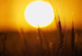 گرمای تابستان شیوع کرونا را کاهش نمیدهد