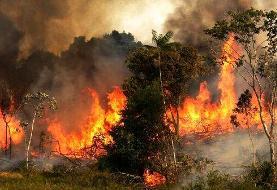 آتش در اطراف دریاچه خلیج فارس تهران مهار شد