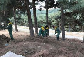 طراحی و اجرای ۵۶ پروژه در بوستان جنگلی سرخهحصار