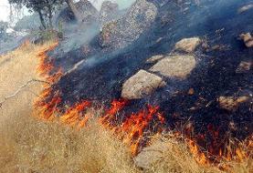 پیشروی سهروزه آتش در جنگلهای اندیکا