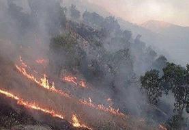 ۴۰ هکتار جنگل قربانی اختلاف سر زمین | عاملان آتشسوزی خائیز دستگیر شدند