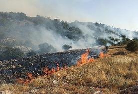 عاملان آتشسوزی کوه خائیز دستگیر شدند