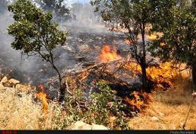 آتشسوزی در مراتع و جنگلهای اندیکا مهار شد / میزان خسارت ها مشخص نیست
