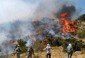 آتش جنگلهای اندیکا سرانجامپس از ۴ روز مهار شد
