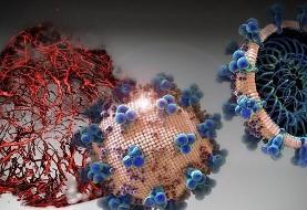 بزرگترین منبع ویروس کرونا شناسایی شد