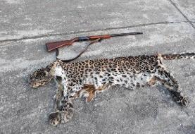 شکارچی پلنگ در سیاهکل دستگیر شد