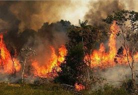 ارتفاعات «بهمرد» در آتش