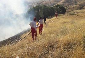آتشسوزی در جنگلهای شلالدون باشت مهار شد