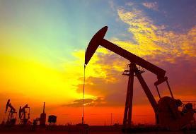 کمترین و بیشترین سهم دولتها از دلارهای نفتی | احمدی نژاد و روزگار سرمستی قیمت نفت
