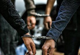 دستگیری تعدادی از عناصر سرویسهای اطلاعاتی بیگانه