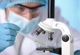 پروانه کار موقت برای محققان خارجی صادر میشود