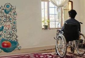 افتتاح خانههای کوچک توانبخشی/پوشش ۱۱۰۰ معلول ضایعه نخاعی جدید