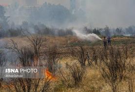 اطفاء ۷۰ درصد آتشسوزی/ حریق تعمدی است