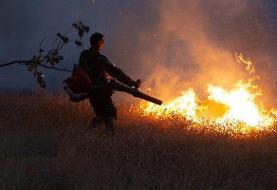 کاهش ۸۵ درصدی آتشسوزی در مراتع مهدیشهر
