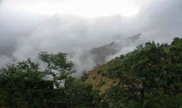 پس  از ثبت بخشی از کوه دماوند به نام سازمان اوقاف، ۵۶۰۰ هکتار از جنگل های ساری هم قرار است به متولی یک امامزاده سپرده شود!