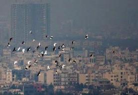 هوای تهران، امروز ۱۳ تیر ۹۹ ناسالم است