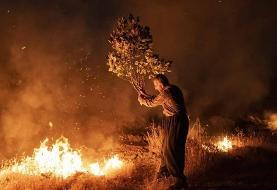 (تصاویر) آتش سوزی جنگلهای پاوه