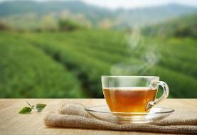 نحوه دم کردن چای خوش طعم؛ چطور یک لیوان چای نشاطآور دم کنیم؟