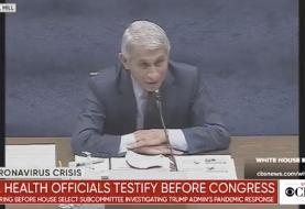 Jim Jordan tries and fails to get Fauci to say protesters should be arrested for gathering ...