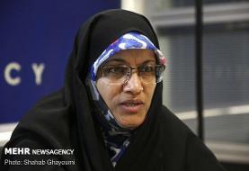 مجلس اجرای قانون عفاف و حجاب را از مسئولان مطالبه میکند