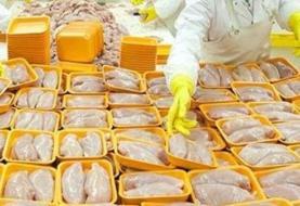 لغو تمامی مجوزهای صادرات مرغ از ۱۴ تیر ماه