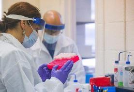 محققان: کروناویروس جدید شیوع بیشتری دارد ولی مریضتر نمیکند