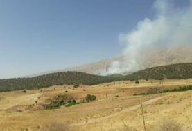 مهار آتش جنگلهای«دمچنار»بویراحمد/جنگلهای«گِل اِسپید»در حال سوختن