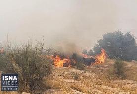 ویدئو / آتش دوباره در خائیز شعلهور شد