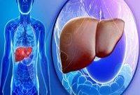 بیماری کبد چرب می&#۸۲۰۴;تواند به بروز بیماری&#۸۲۰۴;های عصبی منجر شود