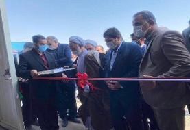 افتتاح فاز اول پروژه بزرگ دامپروری ۳ هزار رأسی