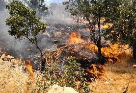 چهارمحال بختیاری/ مرگ امدادگر جوان در آتشسوزی جنگل های لردگان