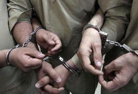 عاملان آتشسوزی بوستان نهجالبلاغه دستگیر شدند