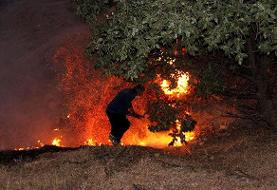 آتش ۷۰۰ هکتار از اراضی قزوین را بلعید