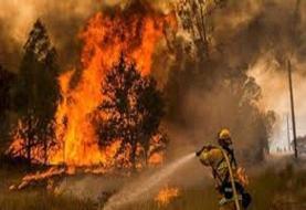 مهار آتشسوزی مراتع ارسباران ادامه دارد