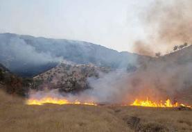 آتشسوزی در کوههای فسا مهار شد
