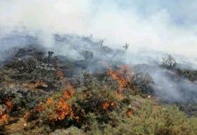 بالگرد ویژه آتش سوزی عازم جنگلهای ارسباران شد