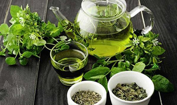 چای سبز را هرگز در این زمانها نخورید