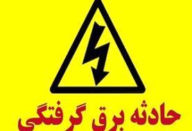 بازداشت مظنونان حادثه پارک لاله در تهران