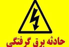 پیگرد و بازداشت مظنونان حادثه پارک لاله