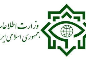وزارت اطلاعات: پنج تیم جاسوسی متلاشی شد
