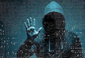 جرایم سایبری نوپاها/استارتاپها مراقب طرحهای تحقیقاتی و اطلاعات مشتریان خود باشند