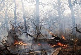 جنگلهای پلدختر آتش گرفت