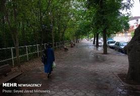 پیش بینی بارش باران در برخی نقاط کشور
