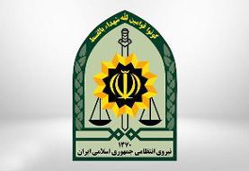 سارق انار در شهربابک دستگیر شد