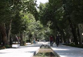 خداحافظی با نیمکتهای خاطرهساز چهارباغ اصفهان