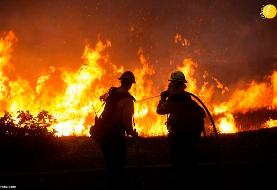 (تصاویر) آتش سوزی مهیب در جنگلهای کالیفرنیا