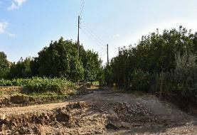 تصاویر | روستایی با یک خانوار در ملکان