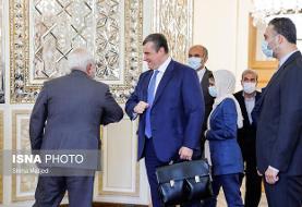 رایزنی رئیس کمیته روابط خارجی دومای دولتی روسیه با ظریف