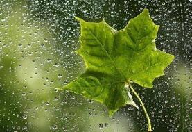 در تعطیلات عید غدیر در کدام استانها باران میبارد؟ | گرد و خاک در ...