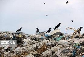 چهارمحال و بختیاری/ معرفی۲۰ پرونده دفن غیراصولی زباله به مراجع قضایی